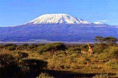 Sancara - Blog sull'Africa: Il Parco Nazionale del Kilimangiaro