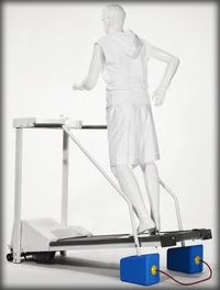 Is running on a treadmill the same as running outside?  It's a common question and despite conflicting opinions, scientific research has shown that running on