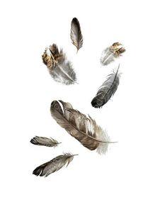 Flotando plumas imprimir archivo de pintura acuarela por jodyvanB