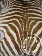 Zebra skin 4 close up