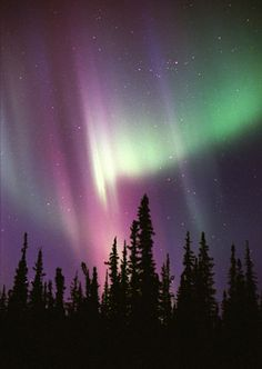 Northern Lights in Alaska, also called the Aurora Borealis.