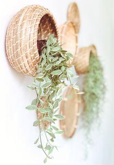 Decorando mi escritorio Blog, Ideas, Environment, Desk, Room, Plants, Thoughts