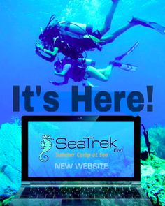 SeaTrek's brand new website is online! Check it out! #SeaTrekBVI #SummerCampAtSea  Simply click this pin and it will direct you right to the new site.