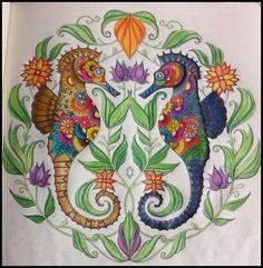 Livro de Colorir Oceano Perdido - Cavalo Marinho | Luciana Queiróz