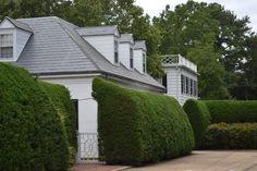 Hedges | LUCY WILLIAMS INTERIOR DESIGN BLOG: BEAUTIFUL HOMES OF NORFOLK, VIRGINIA