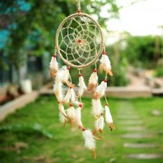Dream catcher wall hanging made up of jute, feathers and plastic ring