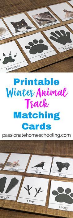 Free Printable Winter Animal Tracks Identification & Matching Cards