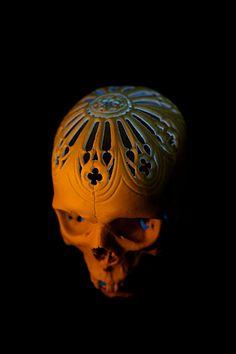 #череп#skull ЧЕРЕПА из пластика 1:1 реалистичен как внешне так и на ощупь, отличное пособие для художников и для медиков... и конечно же для подарков любимым друзьям! вес: 500гр пластик легкий и очень крепкий