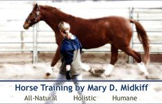 Horse Training by Mary D Midkiff