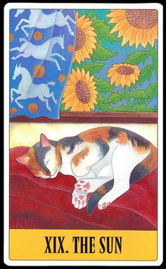 The Sun - Tarot for Cats