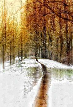 ✯ Walking through the Snow - Sentiero, Italy