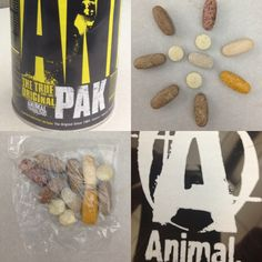 Universal Nutrition makes a great Multi Vitamin for gyn rats! The Animal Pak! Loaded with all Vitamins, Amino Acids, Antioxidants, Digestive Enzymes and more. A lot of pills to swallow each day, but well worth it! All Vitamins, Universal Nutrition, Multi Vitamin, Swallow, Amino Acids, Rats, Pills, Animal, How To Make