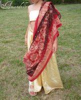 Amandille: Un simili sari pour se déguiser en princesse des I...
