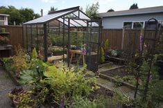Legacy Greenhouse in garden 8x8 $2595