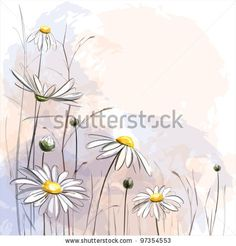 Romantic background with blooming daisies. eps10 by Megapixelina, via ShutterStock