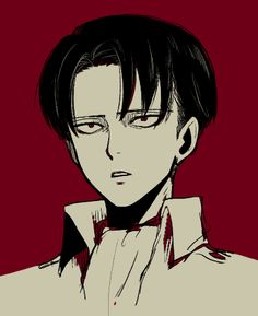 I wonder what Levi is looking at maybe.......New cleaning supplies........or Eren.......