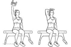 Seated Single Arm Overhead Dumbbell Tricep Extensions  WorkoutLabs