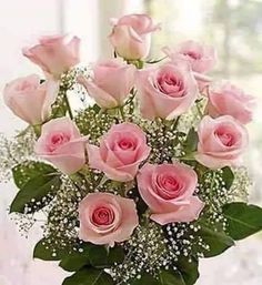 My all time favorite rose. Beautiful Roses, Colorful Flowers, Beautiful Flowers, Rosen Arrangements, Floral Arrangements, Pink Rose Pictures, Birthday Wishes Flowers, Rose Wedding Bouquet, Good Morning Flowers