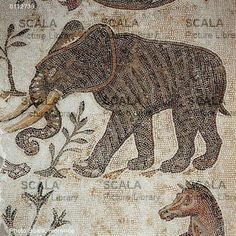 Scala Archives Title: Elephant Location: Bardo Museum City: Tunis Country: Tunisia Period/Style: Late Antique Genre: Mosaic