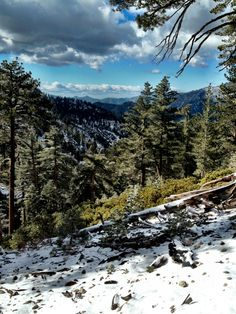 Ice House Canyon Trail.  Nov 2012.