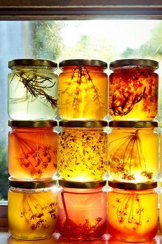 jaagutidrik: Honey infused with herbs Herbes infusant dans du miel Yummy Recipes, Honey Recipes, Salsa Dulce, Think Food, Raw Honey, Honey Butter, Honey Food, Pure Honey, Local Honey