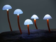 """LED Mushroom Lights LED Mushroom Lights, dubbed """"The Great Mushrooming"""", is designed by Japanese designer Yukio Takano. The LED lamps illuminates powered by batteries, which are embedded in the base of the wood. The lamps comes in various unnatural colors Glowing Mushrooms, Wild Mushrooms, Stuffed Mushrooms, Light Luz, Lamp Light, Lampe Led, Led Lamp, Mushroom Lights, Deco Led"""