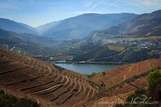 Douro_Valley-147