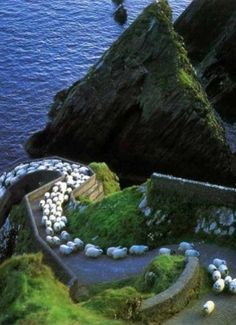 Not ALL of Ireland's traffic jams look like this... We promise!