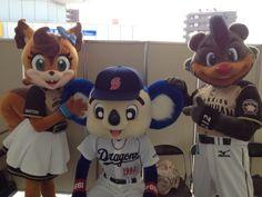 今日もB☆Bとポリーが来てくれました!ドアラと写真撮ってみました! Baseball Mascots, Mickey Mouse, Disney Characters, Fictional Characters, Animation, Animals, Costumes, Animales, Animaux