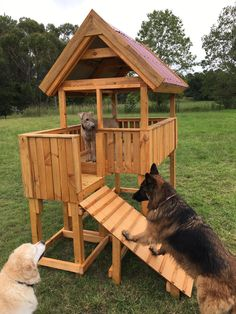 The cubby houses have cleated ramps for the pups to get up into the fort-style houses