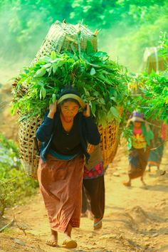 Hard working village women by Sunny Pradhan on 500px