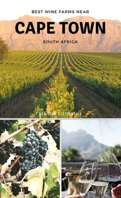 With so many gorgeous, award-winning wine farms near Cape Town, travellers and locals are well and truly spoiled for choice. Here's a selection of the best wineries near Cape Town that stand out above the rest - Non Stop Destination Places To Travel, Places To See, Travel Around The World, Around The Worlds, Uganda, Africa Destinations, Holiday Destinations, Road Trip, Cape Town South Africa