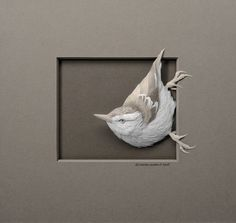 Stunning paper art animals will blow your mind