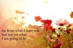 far-from-what-i-once-was-but-not-yet-what-i-am-going-to-be.jpg (500×333)