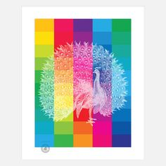Rainbow Peacock Print now featured on Fab.