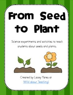 This pack includes multiple science experiments and activities to teach young learners about seeds and plants.