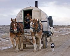 Sheep Wagon, Red Desert, Wy by A. Ruttle So this is how they drive the horses using a sheep wagon, I was wondering where the driver sat. Horse Wagon, Horse Drawn Wagon, Gypsy Caravan, Gypsy Wagon, Wyoming Vacation, Old Wagons, Chuck Wagon, Bushcraft Camping, Shepherds Hut