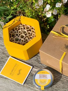 20 cool eco friendly gifts - Nature Holds the Key Uk Bees, Plastic Problems, Herb Garden Kit, Large Cushion Covers, Cork Purse, Bee Gifts, Toilet Roll Holder, Herbs Indoors, Beeswax Candles