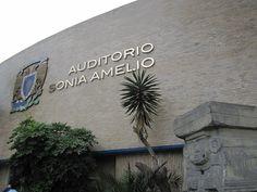 Titulo: Auditorio Autor: Adriana Montserrat Ochoa Morales Fecha de realización: 28/11/15 Apertura de diafragma:8.0 F Velocidad de obturación:1/125 s ISO:100