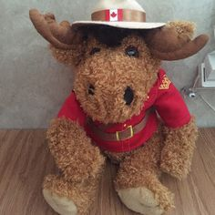 Canadian Moose Stuffed Park Ranger Plush Made in Canada purchased in Epcot Walt Disney World cute little moose park ranger plush in perfect condition Other