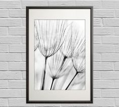 black and white wall art, black and white poster, photo art, monochromatic, black and white photo prints, black & white pohoto, photo art,