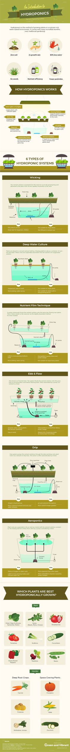 Growing food with Hydroponics What if you have to live in a place where the soils are arable? Or how to provide large amounts of fresh food for your family when your space is limited?
