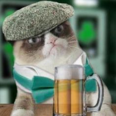 Grumpy Cat, you are only one year old! You are not old enough to drink beer yet! I guess there is another reason Grumpy Cat is grumpy. Gato Grumpy, Grumpy Cat Humor, Cat Memes, Grumpy Kitty, Crazy Cat Lady, Crazy Cats, Cat Quotes, Funny Quotes, Drunk Quotes
