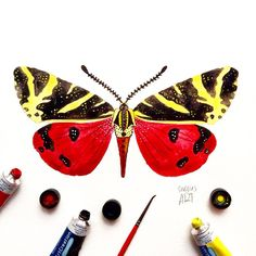 """Day 12 of my challenge #100daybutterflies #100daychallenge In Greece there is a wondrous place known as """"Valley of Butterflies"""" which is in the island of Rhodes! So today's butterfly is a Panaxia butterfly-moth! It can also be found in the rest of Europe. #arts_help #art_we_inspire #imaginationarts #artdaily #craftsposure #challenge #art #painting #illustration #butterfly #handdrawnart #valleyofbutterflies #nature #phooftheday #doodle #love #colorful #rtistic_feature #featuregalaxy…"""