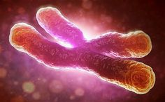 Harvard and Northwestern University discovered that tiny but significant changes are already happening in the body more than a decade before cancer is diagnosed.