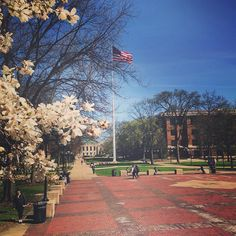 A beautiful day on the diag!