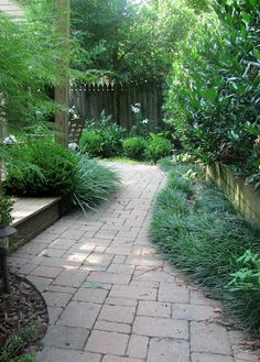 the path to the patio