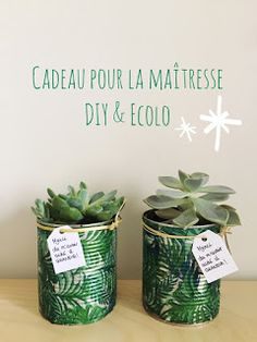 Making a House a Home: A Pretty Plant for the Gift of the Mistress (DIY eco & easy) Diy Cadeau Maitresse, Advantages Of Watermelon, Lego Friends, Teacher Gifts, Diy And Crafts, Dyi, Blog, Place Card Holders, Pretty