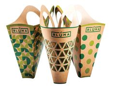 Bluma Paper Bag for Carrying Flowers Comfortably 4