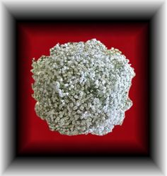 Occasions Florist  Murphy NC  Top view of a Baby's Breath Bouquet